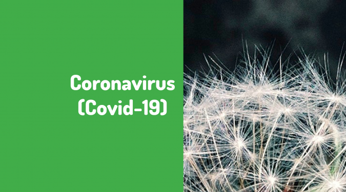 Coronavirus: la Belgique en confinement strict